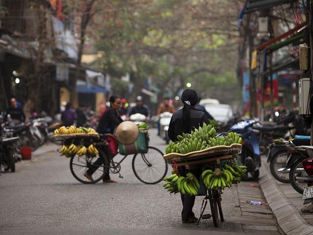 ovoce na kole v hanoji